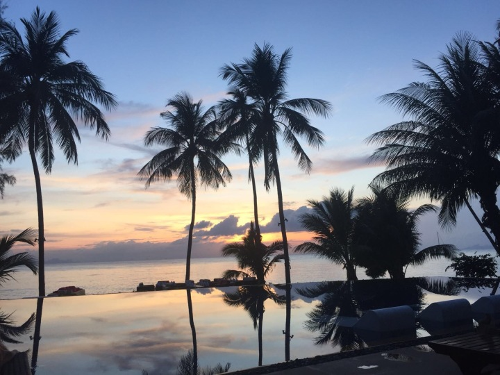 Image of an infinity pool overlooking the sea with palm trees and a sunset